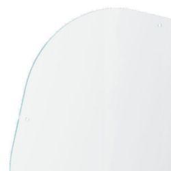 Beschermglas MINI