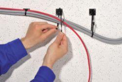 Kabelbinder 210x4,7 mm, offener Binderkopf, natur